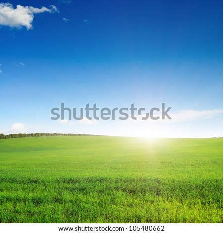 pictorial field and blue sky - stock photo