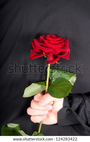 Picture a man holding a red rose behind his back - stock photo