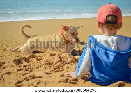 Picture back view of boy with dog on the beach outdoors background - stock photo