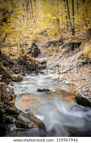 Picture of a creek in a forest in summer with a long exposure time in the autumn. - stock photo