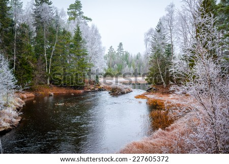 picture of a river with frosty trees around - stock photo