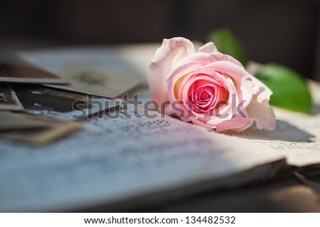 picture of an illuminated pink rose on old sheets of music and old photos