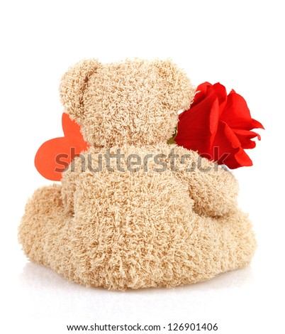 Picture of brown furry Teddy bear with red beautiful rose and heart-shaped greeting card isolated on white background, back side of cute soft toy, Valentine day holiday, romantic gift, love concept - stock photo