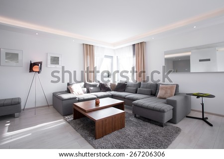 Picture of designed interior with modern furniture