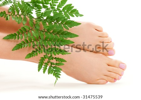 picture of female feet with green fern leaf over white - stock photo