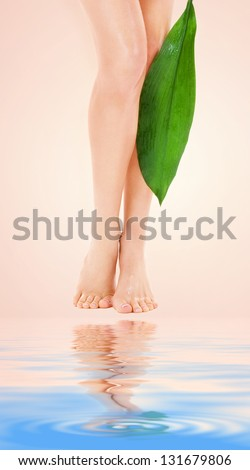 picture of female legs with green leaf over beige background - stock photo