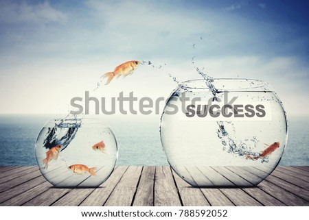 Picture of golden fish leaping to another aquarium with success word, concept of better business