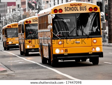 Picture of School busses - stock photo