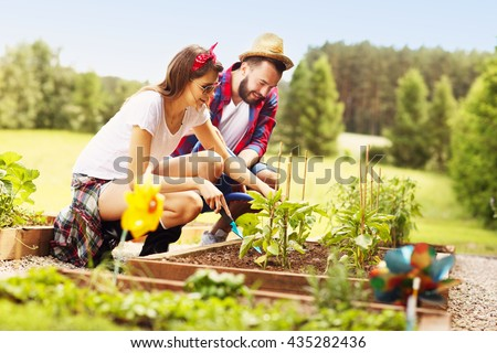 Picture of young couple planting organic vegetables and herbs - stock photo