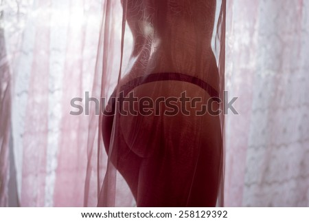 Picture silhouette of sexy seductive beautiful young lady in lingerie or bikini having fun hiding behind tulle curtain on copy space background - stock photo