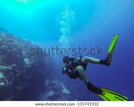 Picture taken in Bonaire, Caribbean - stock photo