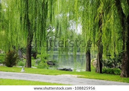 Picture the scene of willow and path at bank of pond. - stock photo