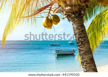 Picturesque fishing boats parked in the clear ocean on a background of palm trees and beautiful clouds. Mauritius - stock photo