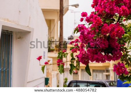 Picturesque Greek street and courtyards