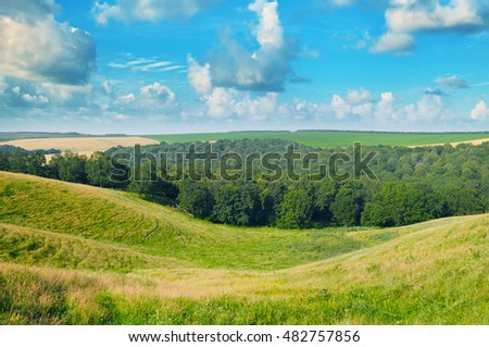 picturesque hills, forest and blue sky