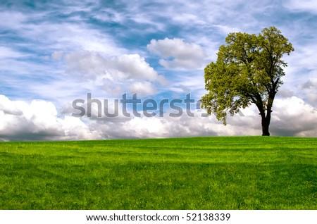 Picturesque Landscape - stock photo