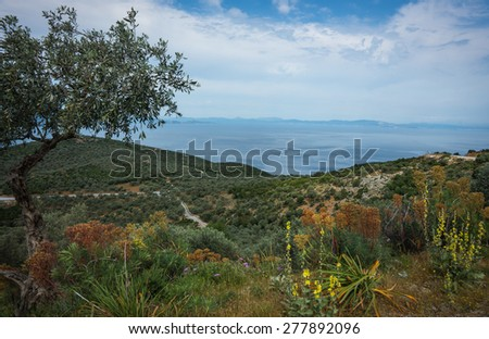 Picturesque landscape of sea and mountain at Pelion, Greece