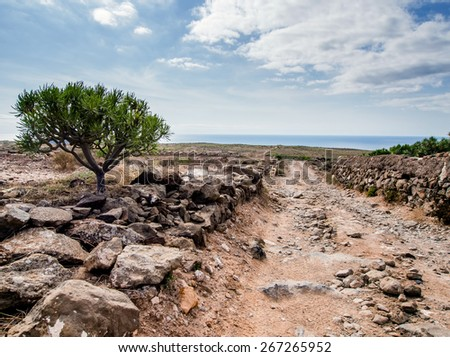 Picturesque landscape of Tenerife. Canary Islands. Spain - stock photo