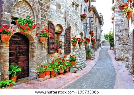 Picturesque lane with flowers in an Italian hill town                        - stock photo