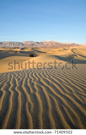 Picturesque ripples in the Mesquite Sand Dunes of Death Valley National Park, California. - stock photo