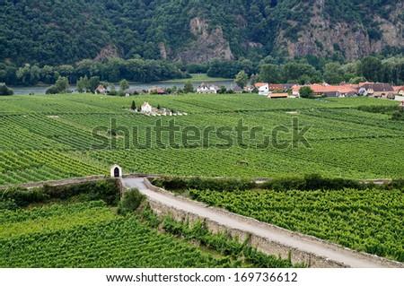 picturesque roadside chapel and cemetery of Loiben surrounded by vineyards, Oberloiben near Durnstein, Wachau, Austria - stock photo