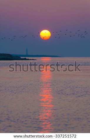 Picturesque sea sunset above beacon at rock with birds flock flight silhouettes against large red-yellow sun disk - natural vertical background - stock photo