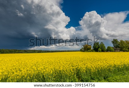 Picturesque thunderclouds above rapeseed field, agriculture region in Europe - stock photo