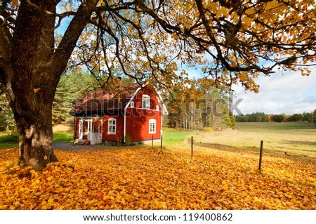 Picturesque traditional red Swedish house amongst a carpet of yellow orange autumn leaves in a peaceful country landscape - stock photo