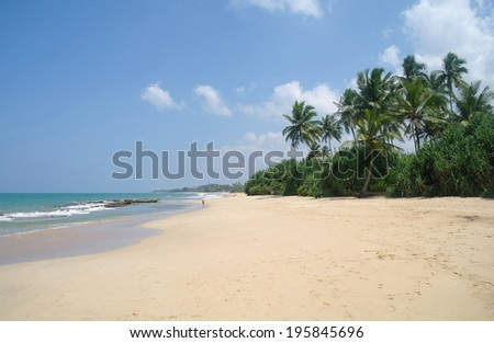 Picturesque  tropical beach. Sri Lanka