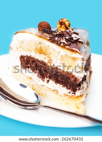 piece of cake with a chocolate interlayer on a blue background