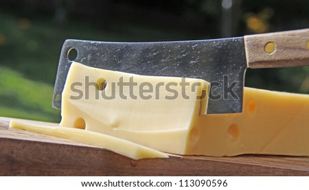 Piece of cheese, cutting Swiss cheese - stock photo
