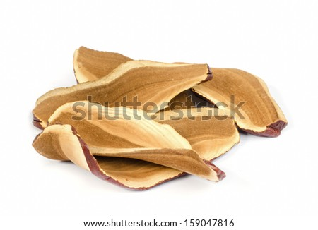 Piece of dry Ling Zhi Mushroom on white background. - stock photo