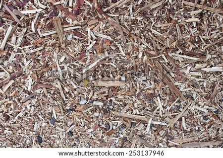 piece of dry twig on floor as background - stock photo
