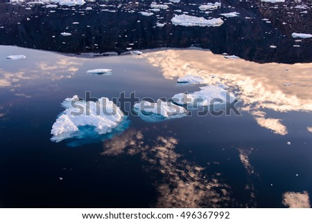 Piece of freshwater ice at sea