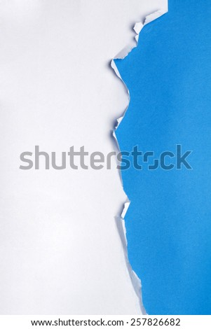 Piece of paper torn in various shapes. - stock photo