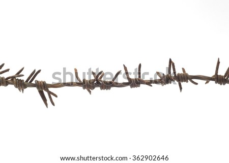 piece of the rusty barbed wire on white background