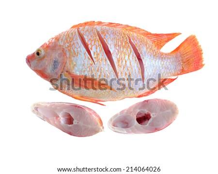 pieces of chopped nile tilapia on a white background - stock photo