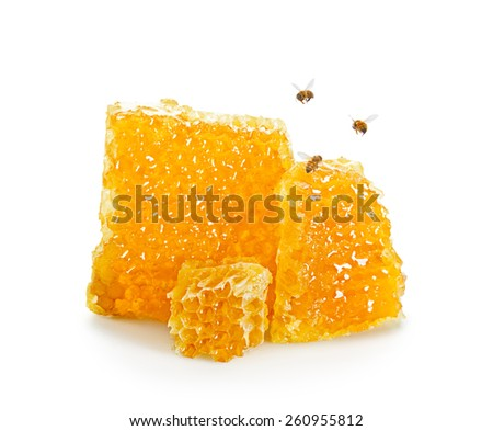 Pieces of Honeycomb with Flying Bees on White Background - stock photo
