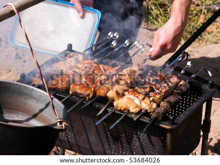 Pieces of marinated pork and chicken on barbecue