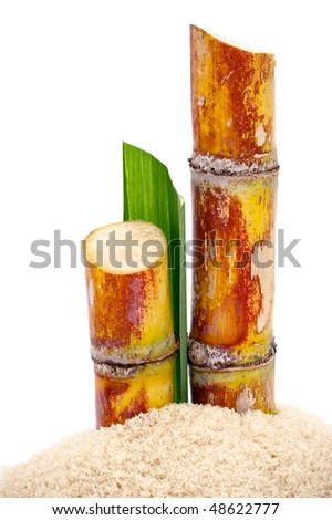 Pieces of sugarcane on a pile of sugar on white background - stock photo
