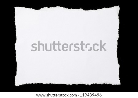 Pieces of torn paper - stock photo