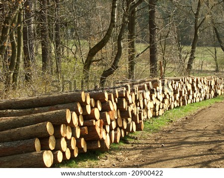 pieces of wood along the road - stock photo