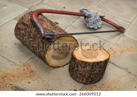 Pieces of wood sawed from logs for birdhouse - stock photo
