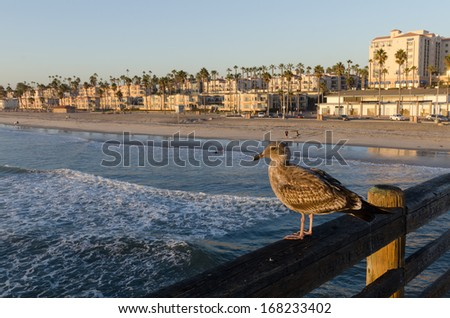 pier in southern california - stock photo