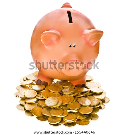 Pig bank and money coin. Isolated over white background - stock photo