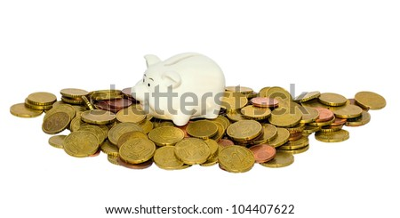 piggy bank in coin isolated on a white background