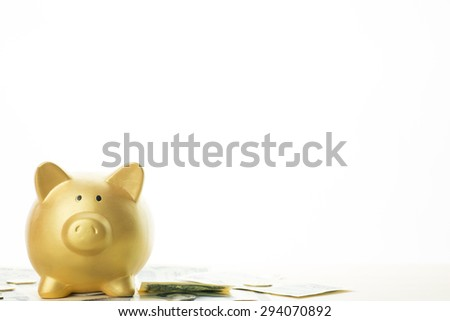 Piggy bank of golden pig - stock photo