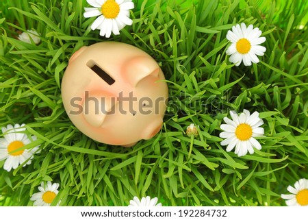 Piggy bank on green grass with flowers background  - stock photo
