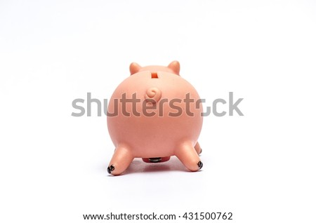 Piggy bank  pig doll on white background