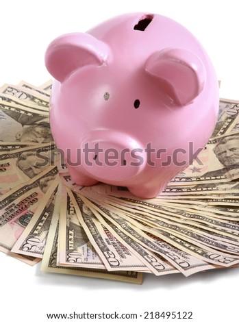 piggy bank standing on dollars - stock photo